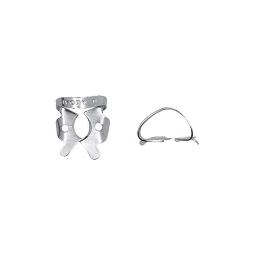 Ivory Clamp Regular Molar 11 (Kulzer)